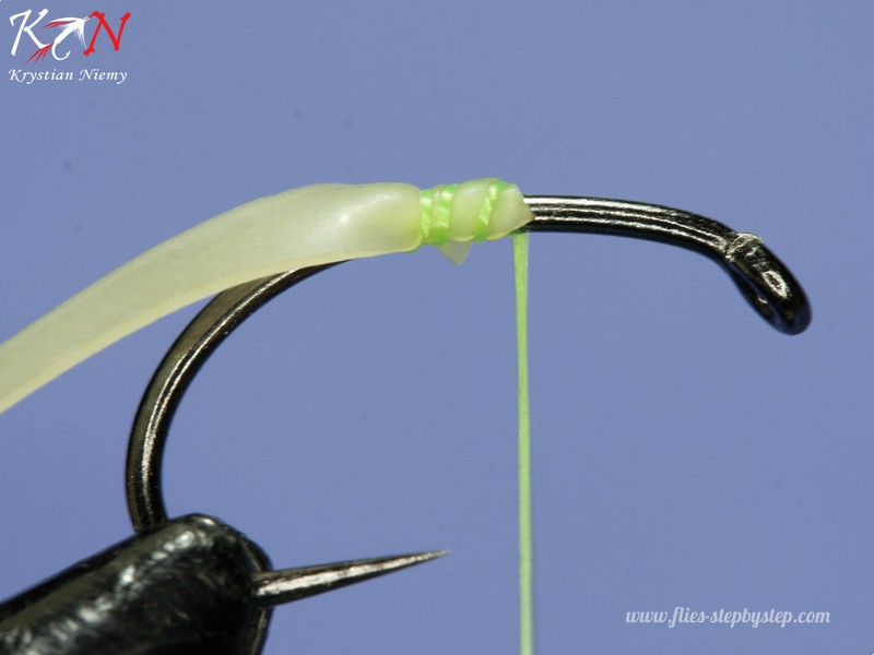 hair caddis pupa02