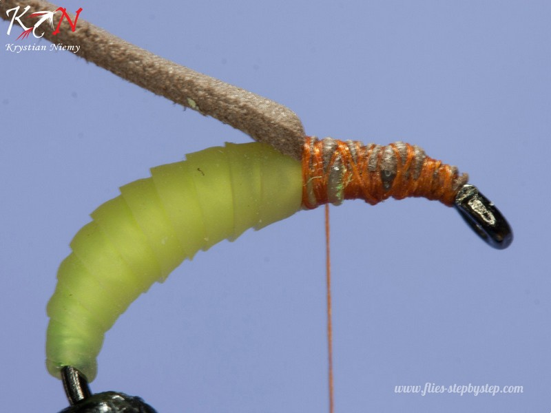 hair caddis pupa05
